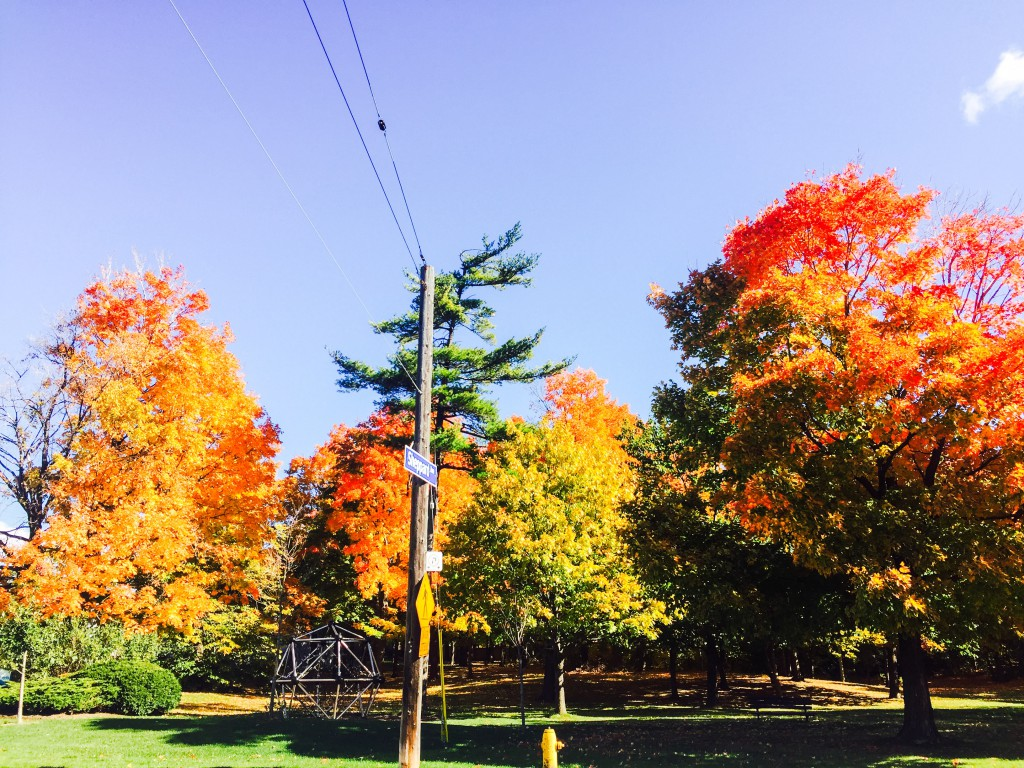 Kanadische Herbstfarben