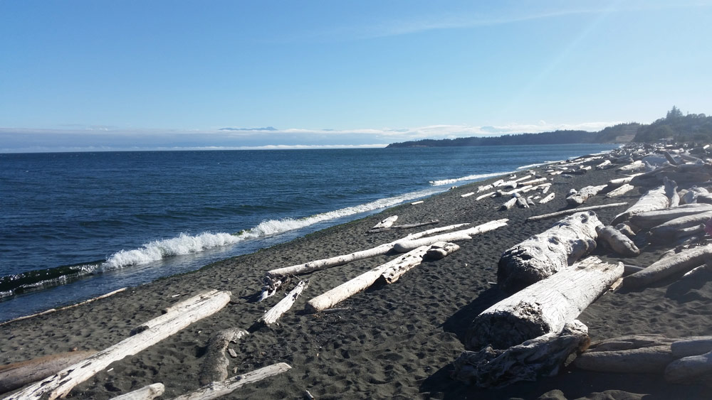 Am Esquimalt Lagoon Beach